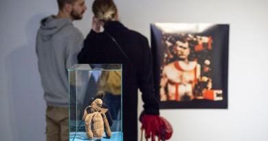 Екскурсія по виставці «Медитації Фібоначчі + Вельветовий заєць»