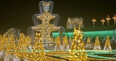 Світлове та музичне шоу в Królewskim Ogrodzie Światła