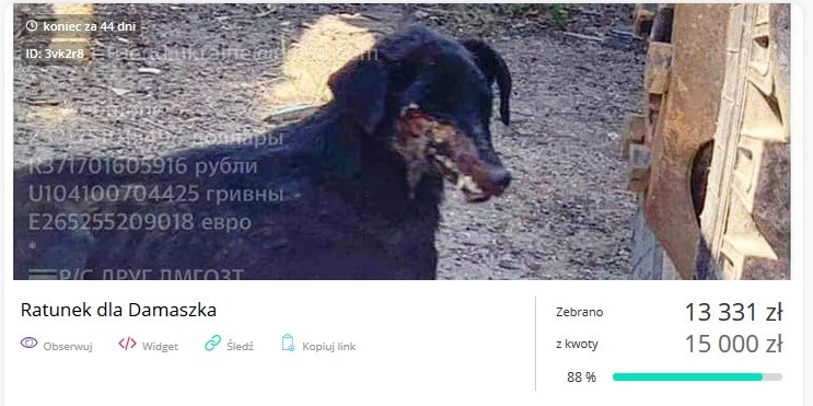 screenshot/zrzutka.pl