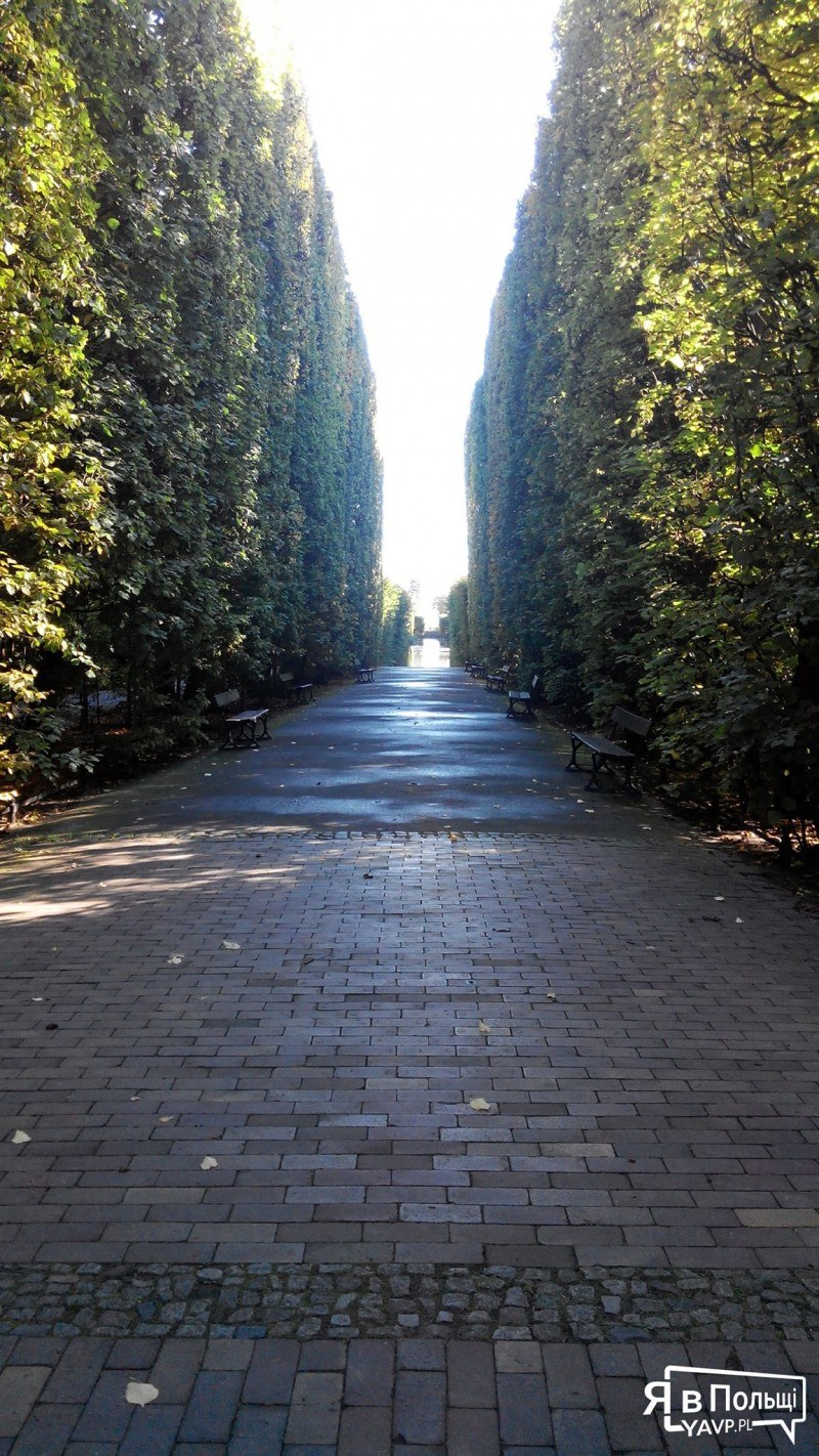 Олівський парк