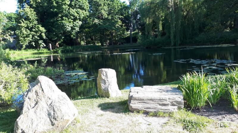 Оливський парк