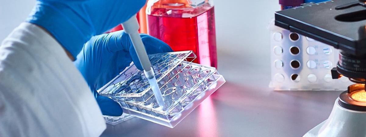 У Польщі росте кількість інфікованих та померлих від коронавірусу