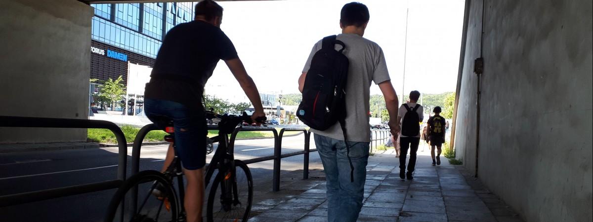 Штрафи для пішоходів у Польщі та Україні: за що можуть покарати й на скільки