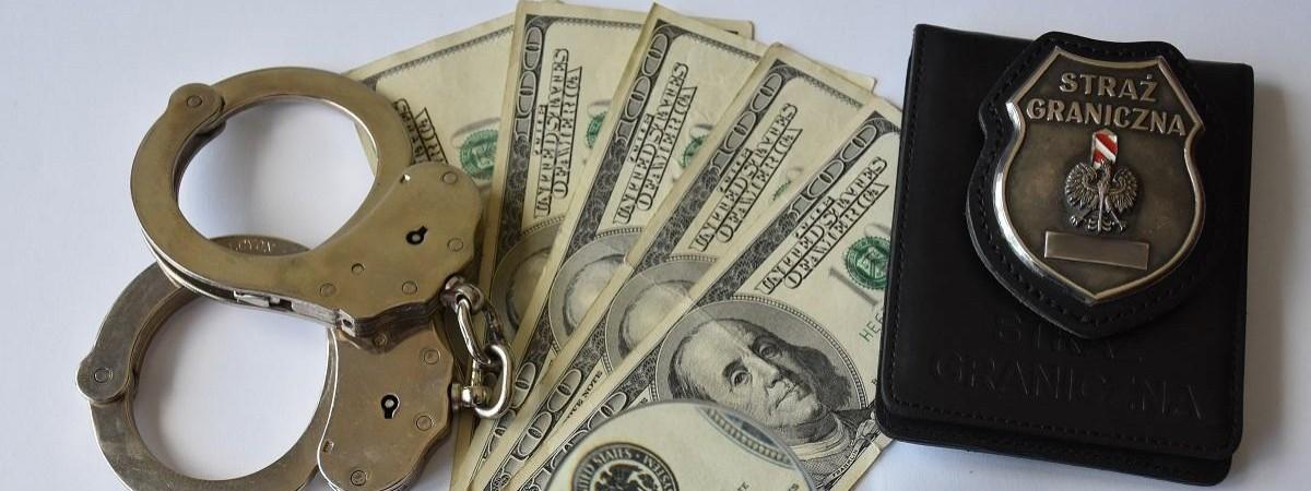 Украинец поплатился из-за валютных хитростей на польской границе