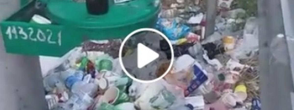 """""""Хто це н*срав?"""": відео з українсько-польського кордону підірвало інтернет (ВІДЕО)"""