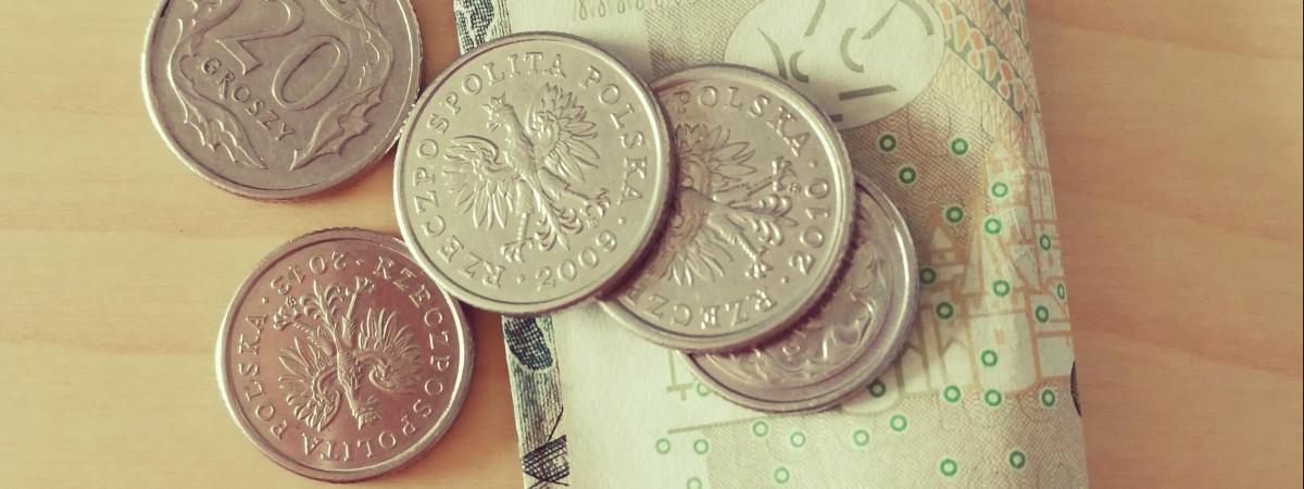 """У Польщі """"кинули"""" на гроші групу працівників з України: ті збирають і продають гриби, щоб купити їжу"""