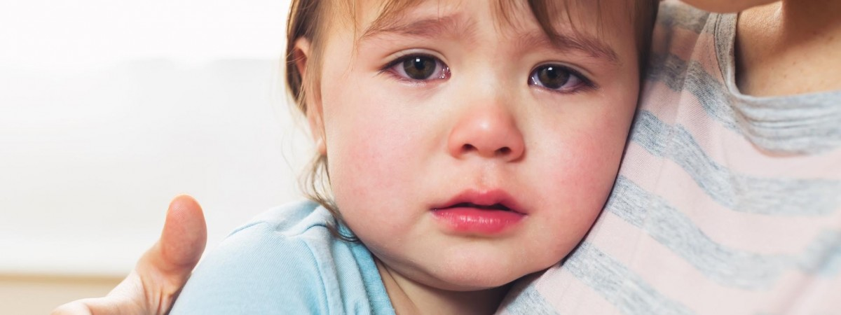 """""""Свята без тата"""". У Польщі збирають гроші та солодощі для осиротілих через війну на сході України дітей"""