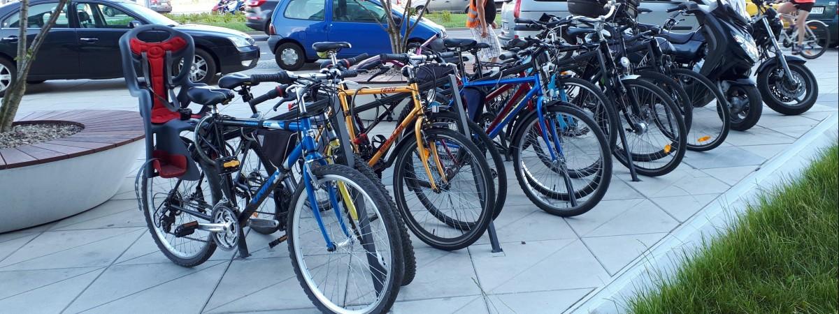 Штрафы для велосипедистов в Польше: проверьте, за какие нарушения могут наказать и на сколько
