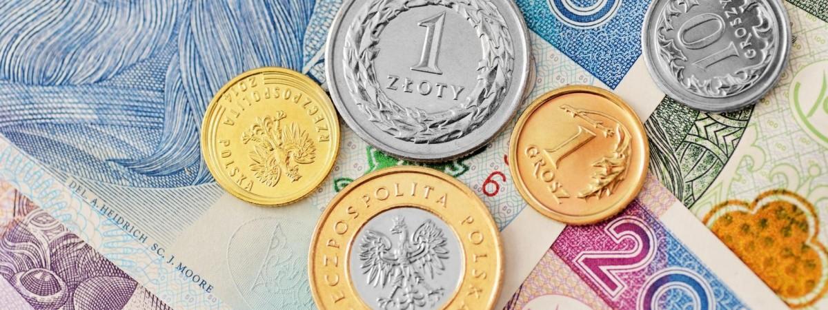 Скільки заробляють і на які гроші живуть українські працівники в Польщі (Дослідження)