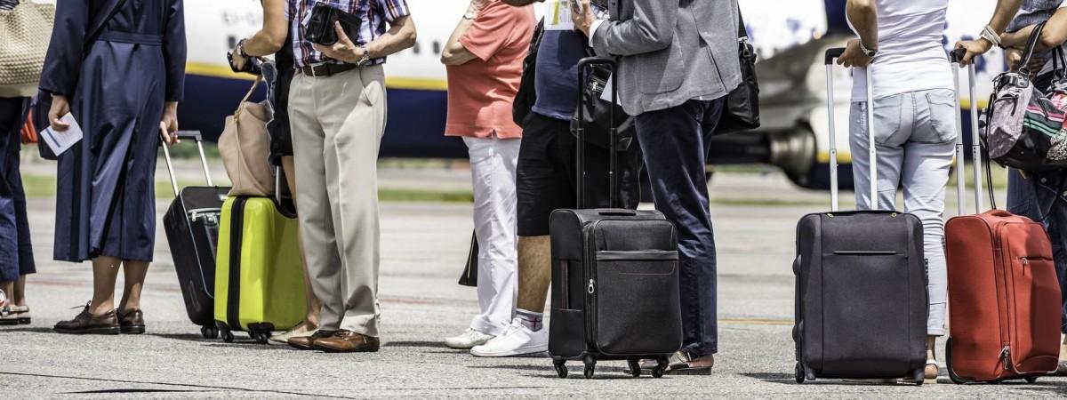 Польські митники були вражені: в багажу українки знайшли екзотичну річ (ФОТО)