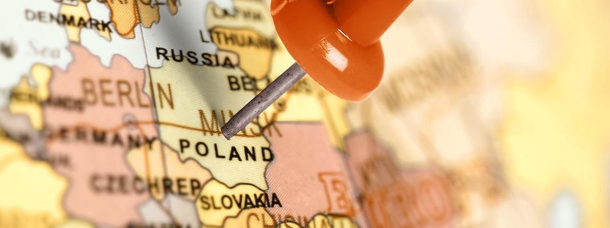 7 важливих змін у Польщі з січня: нові міста, дорожчі собаки, світло і не тільки це