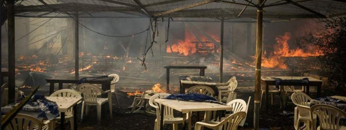 Смертоносные пожары в Европе. Польша оказывает помощь в борьбе со стихийным бедствием - фото