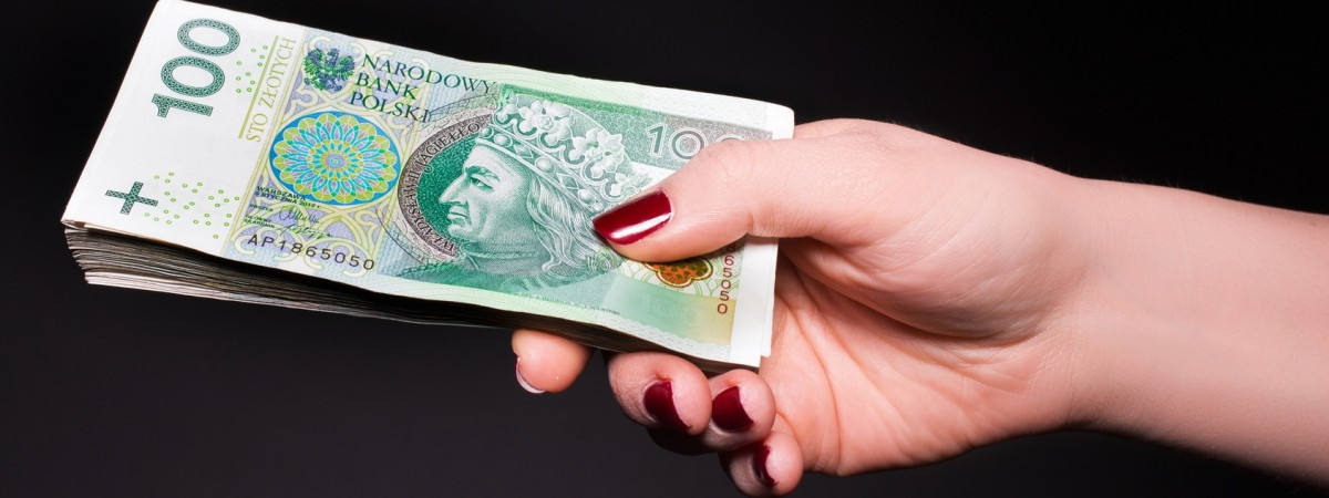 Опубліковані середні зарплати на тимчасових роботах у Польщі. За цю  нескладну роботу платять аж 21 злотий ... b9fe2b1a789cc