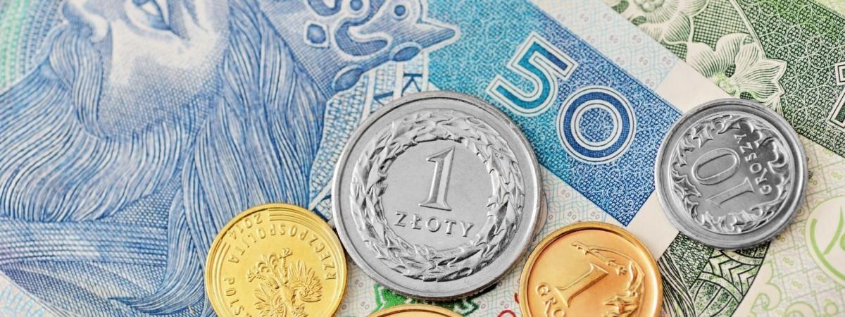 Мінімальна зарплата в Польщі в 2022 році зросте: уряд затвердив нові ставки