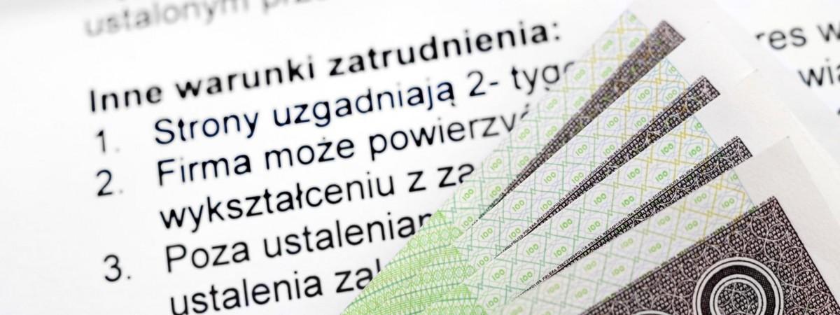 """Продали понад 8 тис дозволів на роботу. У Польщі викрито чергову групу """"ділків"""""""
