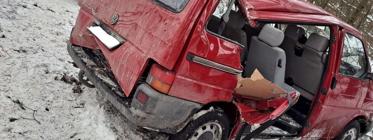 У Польщі бус з українцями злетів зі слизької дороги й врізався в дерево