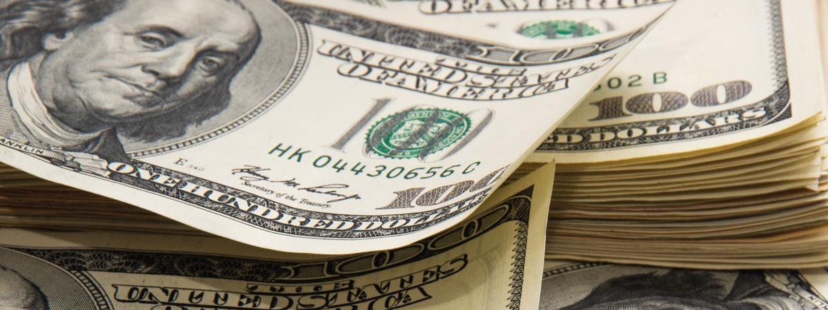 Українець у Польщі вкрав гроші в співвітчизниці й закопав їх під кущем