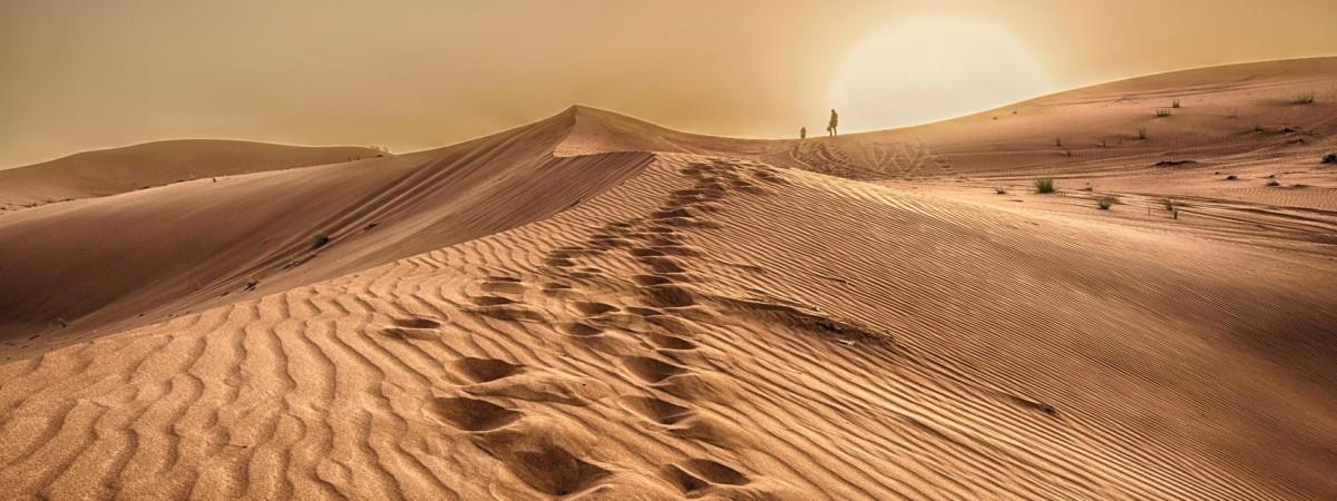 Невідома Польща: одна з найбільших пустель у Європі