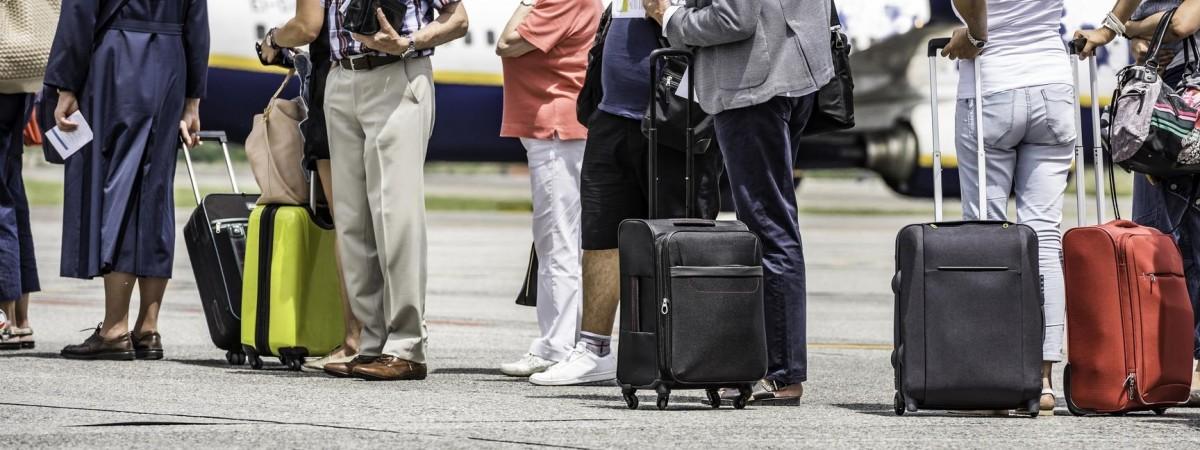 Польские таможенники были удивлены: в багаже украинки нашли экзотическую вещь (ФОТО)