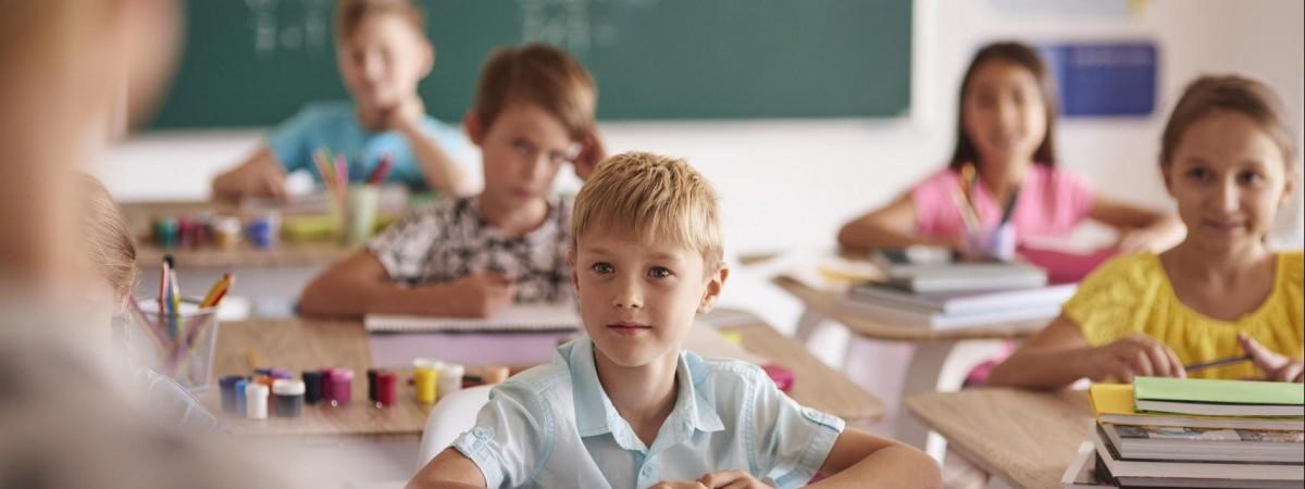 Украинские учителя в польских школах: поддерживают ли они забастовку педагогов? (ВИДЕО)