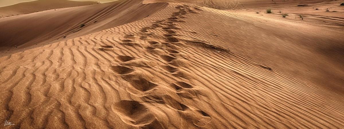 Неизведанная Польша: одна из самых больших пустынь в Европе