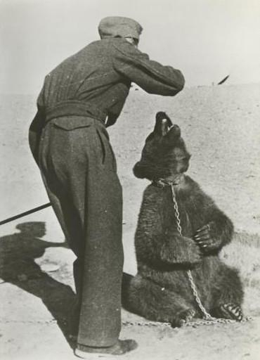 Польский солдат с Войтеком в Иране